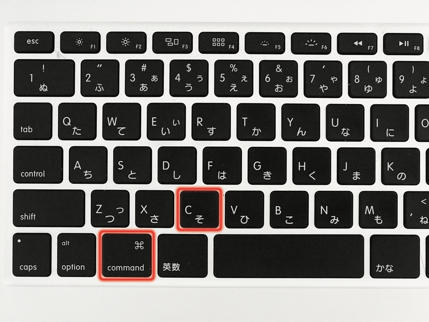 Wordpress エディタ