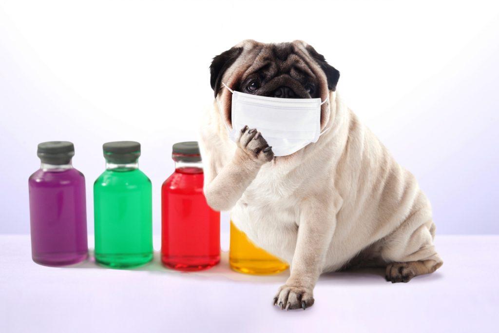 マスクにも暑さ対策を! 熱中症 マスク冷却アイテム